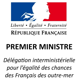 delegation-intermin